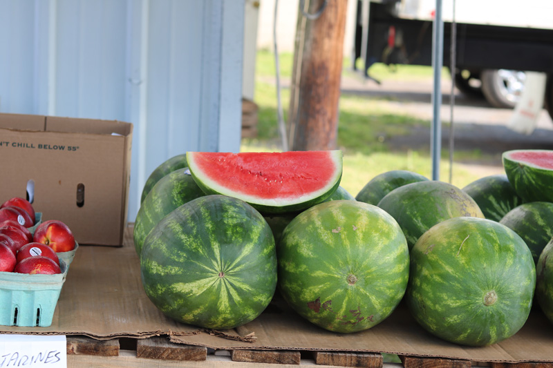 Fresh Local Watermelon