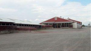 Middleburg Livestock Auction Barn
